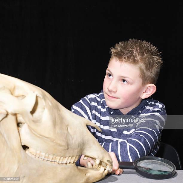 Boy with animal skull