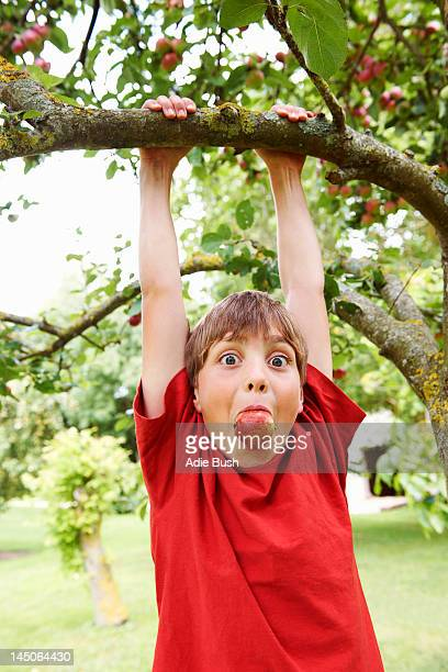 Boy with apple in his mouth playing in fruit tree