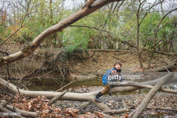 Boy with backpack sitting on fallen tree in forest
