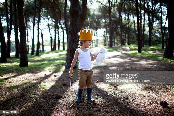 Boy with bunny, sword and crown in the forest