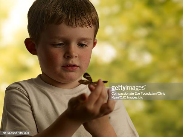 Boy (4-5) with butterfly on finger, outdoors
