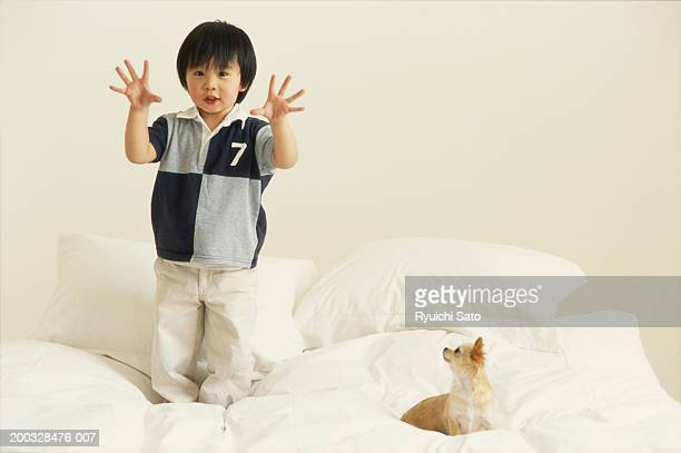 Boy (3-4) with dog on bed, showing fingers