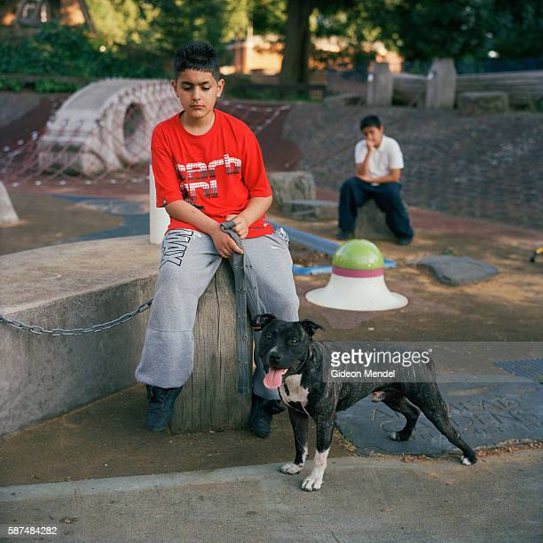 A boy with his pet dog on the Kingsmead Estate in Homerton in the eastern part of Hackney The estate has 980 flats and houses more than 3000 people...