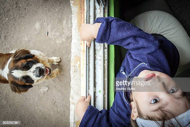 boy with his pet - andres ruffo stock pictures, royalty-free photos & images
