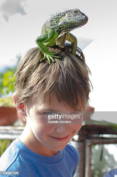 Boy with iguana on his head