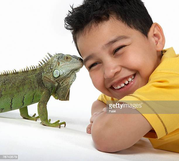 boy with iguana - iguana - fotografias e filmes do acervo