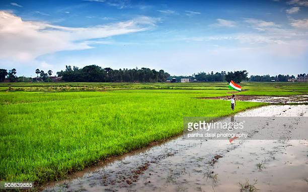 boy with indian national flag on green grass - indian flag stock pictures, royalty-free photos & images