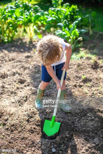 Boy with rubber boots and shovel digging in garden to plant lettuce.