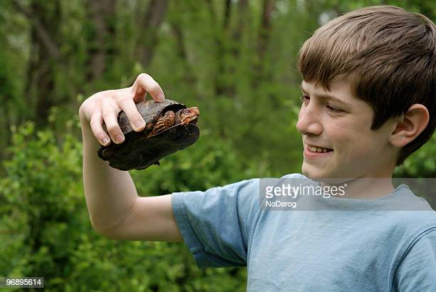 boy with turtle - box turtle stock pictures, royalty-free photos & images