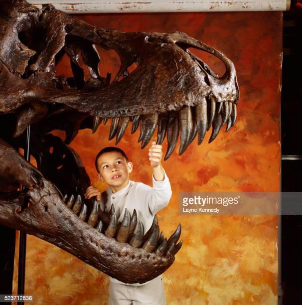 Boy with Tyrannosaurus Rex Skull