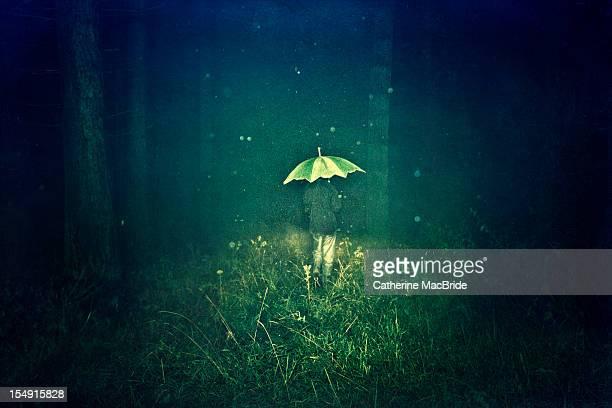 boy with umbrella - solo un bambino maschio foto e immagini stock