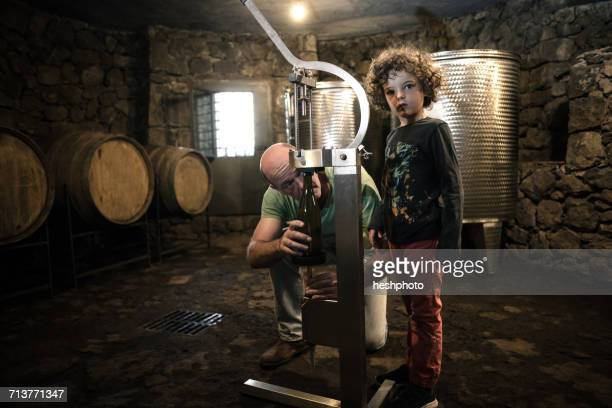 boy with winemaker corking wine bottle in cellar - heshphoto stock pictures, royalty-free photos & images