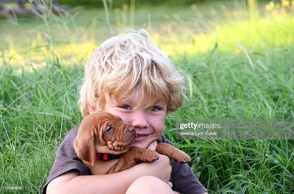 Boy with wrinkled Vizsla puppy : Stock Photo