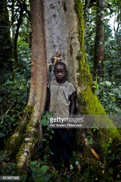 A boy work picking wild coffee on December 6 2012 outside Bonga Ethiopia This Kaffa region is known for its coffee production wild coffee grown in...