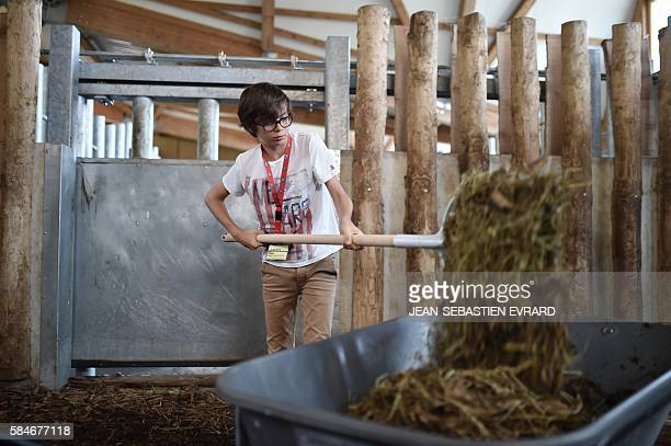 Boy works in a paddock as young visitors take the place of the animal keepers for a day, during a special operation at the zoo of Branfere on July...
