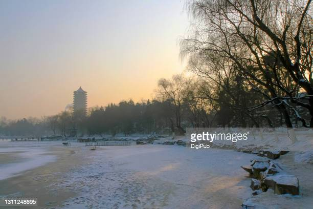 boya pagoda and weiming lake in winter - 2007 stock pictures, royalty-free photos & images