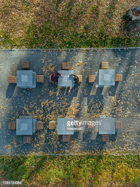 boyfriend and girlfriend playing chess at table in park during autumn - vertical stock pictures, royalty-free photos & images