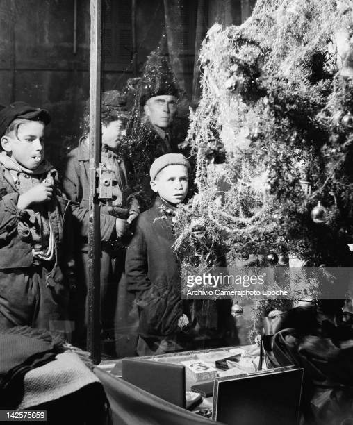 Boys admiring a Christmas tree in a shop window in Comacchio in northern Italy 1949