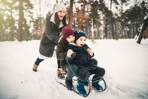 Boys and Mum On A Sled Playing In The Snow 1125743039