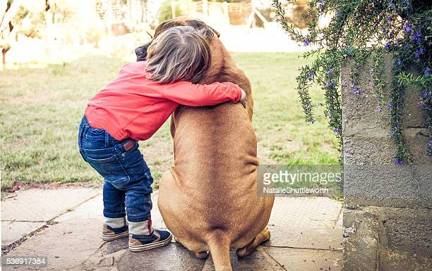 a boys best friend - bull mastiff stock pictures, royalty-free photos & images