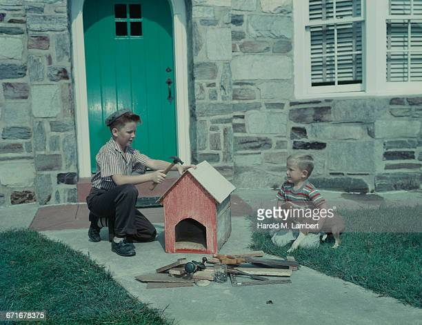 boys building dog house with puppy sitting at side  - pawed mammal stock pictures, royalty-free photos & images