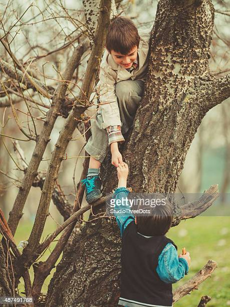 Boys climbing on tree