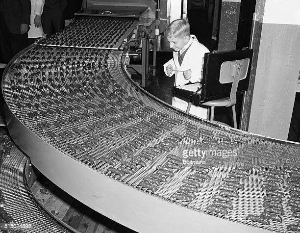 Boy's dream comes true here, as seven year old Robert Lang, of Los Angeles, tries to count the chocolate covered candy bars coming off the production...