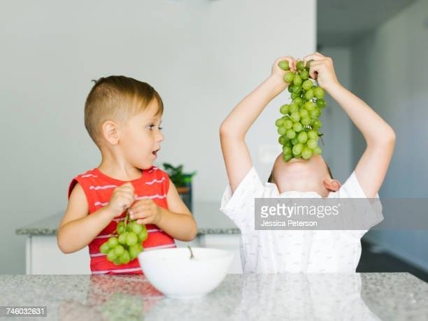 boys (2-3, 6-7) eating white grapes - white grape stock photos and pictures