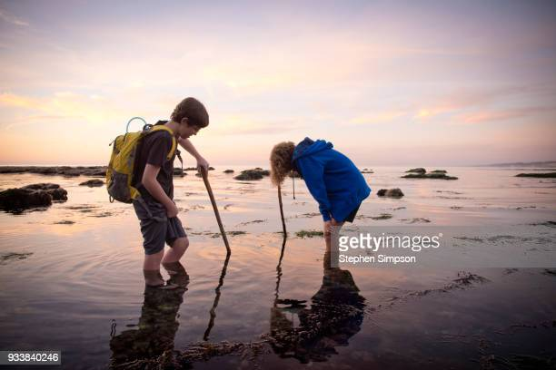 Boys explore tidal pools at sunset