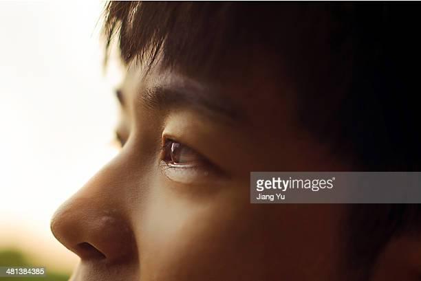 boy's eyes - 人間の眼 ストックフォトと画像