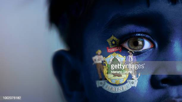 Boy's face, looking at camera, cropped view with digitally placed Maine State flag on his face.