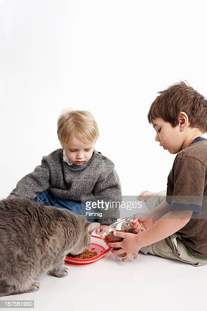 Boys feeding their pet cat.