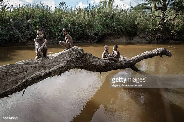 Boys from the Dani tribe sit on a fallen tree over a river at Soroba Village on August 9, 2014 in Wamena, Papua, Indonesia. The Dani tribe live a...
