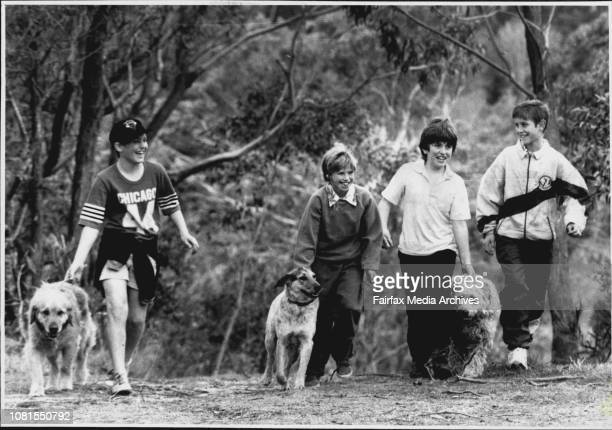 Boys from worth falls in the Blue Mountains went missing overnight and are now safe and wellWentworth falls with the dogs that accompanied them...