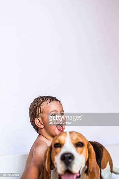 boys having a bath - hound stock pictures, royalty-free photos & images