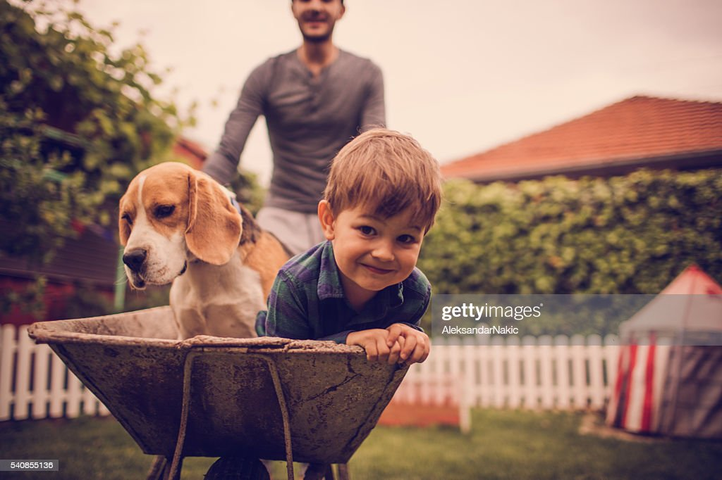 Boys having fun : Stock Photo