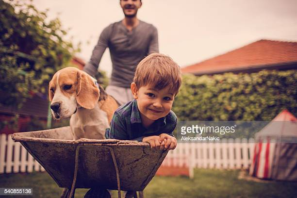 boys having fun - wheelbarrow stock photos and pictures