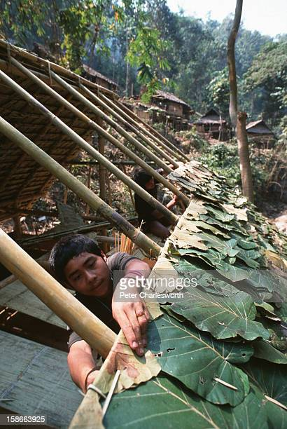 Boys help build a bamboo and leaf hut for their family in a new Karen refugee camp north of the Thai town, Mae Sot. They are recent refugee arrivals...