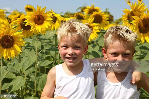 Jungen im Sonnenblumen Feld