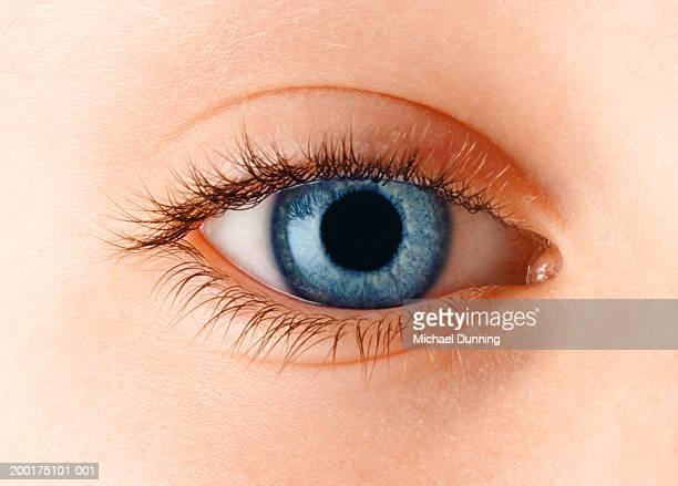 boy's (5-7) left eye, close-up - left eye - fotografias e filmes do acervo