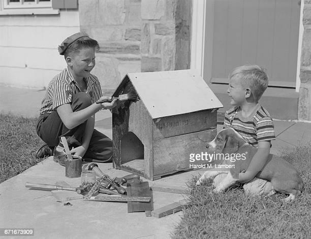 boys painting a dog house - mamífero con garras fotografías e imágenes de stock