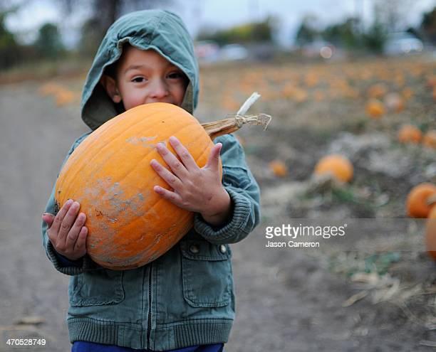 Boy's Picked Pumpkin