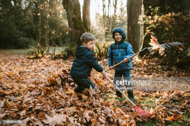 boys raking up autumn leaves - autumn falls stock pictures, royalty-free photos & images