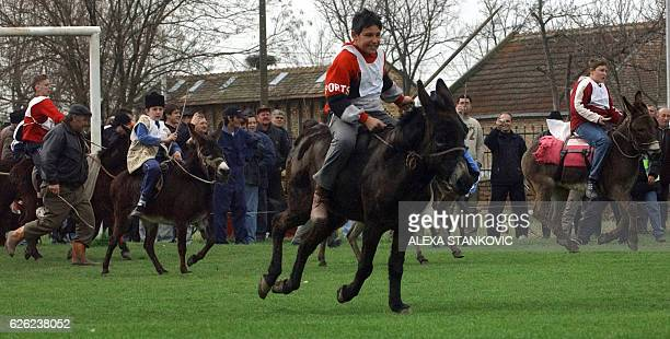 Boys ride donkeys during a traditional donkey race in the village of Sakule 40 km north of Serbian capital Belgrade 24 March 2007 AFP PHOTO / ALEKSA...