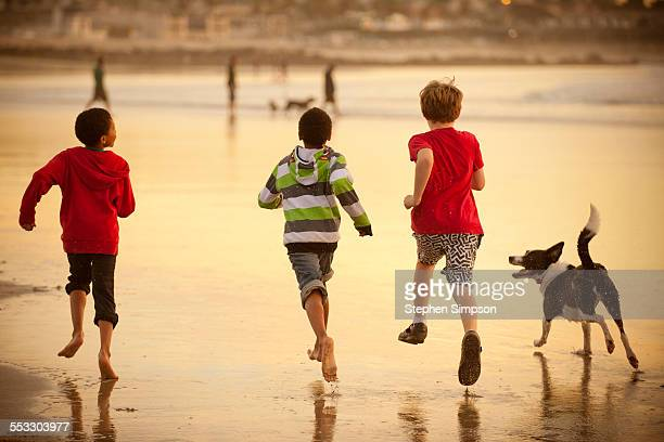 boys running on beach with dogs at low tide