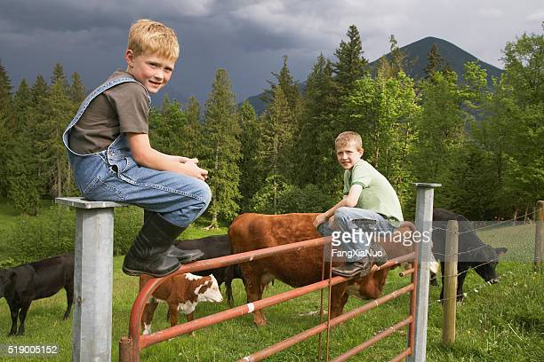 Boys sitting on fence