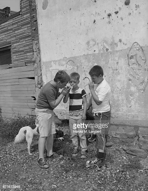 boys smoking cigar - mamífero con garras fotografías e imágenes de stock