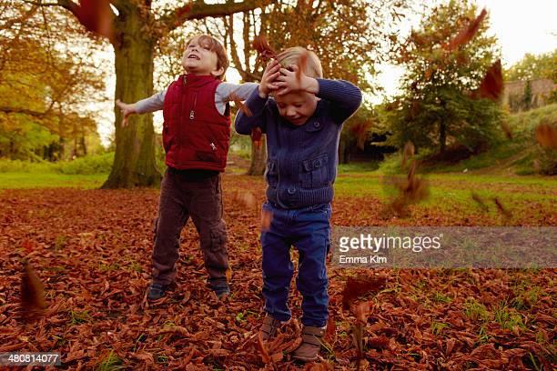 Boys throwing autumn leaves