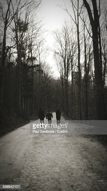 boys walking through forest - alleen jongens stockfoto's en -beelden