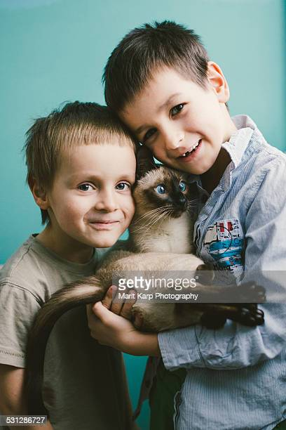 boys with their siamese cat - siamese cat stock pictures, royalty-free photos & images